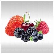 Raudonų vaisių tyrė (1 Kg)